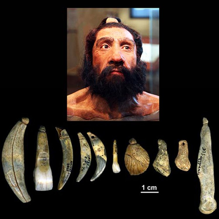 Neanderthals Finally Credited With Making the 40,000-Year-Old Jewelry Discovered in France 67 Years Ago