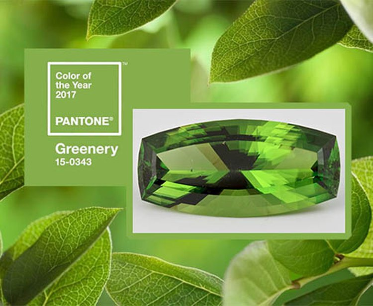 And the Envelope, Please... 'Greenery' Is Pantone's 2017 Color of the Year
